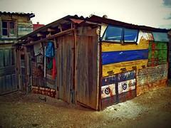 Chaboleando (Cosmovisin) Tags: village pueblo octubre 2008 burgos vendimia chabola castillaleon chamizo cosmovision arauzodetorre
