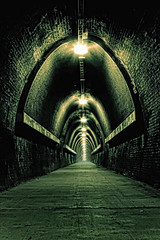 The Tunnel (Naomi Frost) Tags: old never green texture yellow lights frost cs2 path bricks naomi disused walls ending traintunnel topazadjust fernleightrack