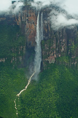 Angel Falls - My Highlight Of 2008 (Ian Lambert) Tags: world holiday southamerica rain forest plane waterfall searchthebest venezuela angelfalls highest supershot 1km kerepakupaimer
