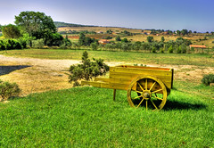 The Handcart (esinuhe69) Tags: verde green country lawn il campagna tuscany fiorentina toscana 1001nights grassland carretto prato handcart soe the pescia goldstaraward esinuhe69 oltusfotos