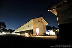 SUV_8794 (Cougar-Studio) Tags: castle nikon kyoto 京都 d3 nijo 二条城 nijocastle 世界遺產 元離宮 20110404