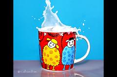 splash (Noura alramli) Tags: life blue red speed 50mm milk high still splash hsp nikon5000 nal ramli