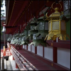 Special Edition (@_@;)   (HASSELBLAD 500C/M) (potopoto53age) Tags: 6x6 film japan metal zeiss mediumformat square t gold shrine special hasselblad squareformat  epson fujifilm 100 lantern nara edition  shintoshrine f28 reala planar  80mm 500cm hassel carlzeiss kasugataisha specialedition hasselblad500cm appleaperture  kasugataishashrine fujifilmreala100 kasugano carlzeissplanar80mmf28t epsongtx970 gtx970  thousandsoflanterns mygearandme metalliclantern