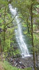 Erskine Falls 1st Lookout II (rabenaas7727) Tags: wasserfall greatoceanroad lorne erskinefalls