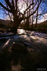 Flowing Past (Sean Bolton (no longer active)) Tags: wales river flow morninglight cymru estuary flowing mawddach gwynant dolgellau seanbolton abergwynant ffotocymrucouk