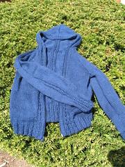 Little Kids hoodie Open