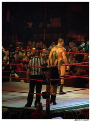 Orton Waits for Punk