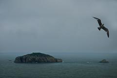 Islas (Ariasgonzalo) Tags: paisajes azul mar asturias colores niebla islas marcantbrico photoshopcreativo
