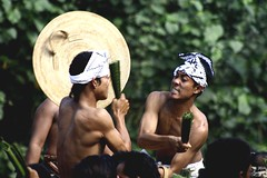 perang pandan (Farl) Tags: bali indonesia ceremony culture battle celebration duel bloody tradition thorns pandan ritesofpassage rits manggis screwpine karengasem tenganan perangpandan