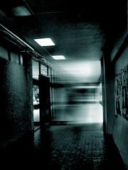 pasillo-fantasmal (Clauminara) Tags: blur verde green luz méxico mexico mexicocity df shadows universidad contraste autonoma metropolitana sombras pasillo ciudaddemexico xochimilco distritofederal destello uam mejico monart duotono méjico uamx universidadautónomametropolitanaunidadxochimilco