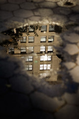Manhattan in a Puddle (CarbonNYC [in SF!]) Tags: building reflection puddle park carbonnyc carbonsf