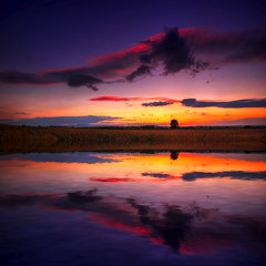 Stay Together (Philippe Sainte-Laudy) Tags: france landscape sky sunset nikond200 reflection nature clouds philippesaintelaudy bravo thegoldendreams specsky thetowerofpriapus ostrellina bratanesque ogm obq oraclex fpg firstquality theroadtoheaven world100f soe megashot atqueartificia aplusphoto bec platinumheartaward theunforgettablepictures tup2 omgbisousxxx