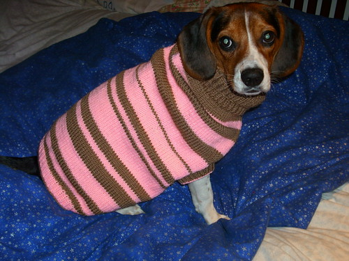 Bella's Sweater