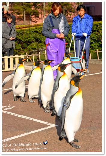 Hokkaido_1253