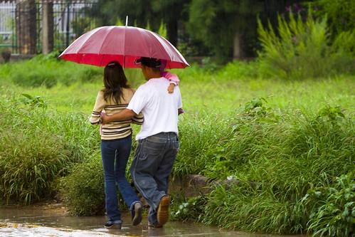 Días de lluvia III