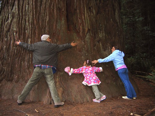 Redwood_Cesar_Paula_Roberta