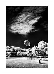 Floating (brtsergio) Tags: bw ir blackwhite balloon infrared serendipity panning bwdreams ferraraballoonsfestival2008