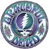 Grateful Dead Steal Your Face batik design