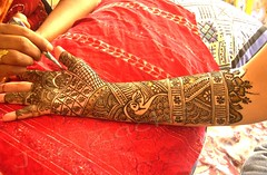 Mehendi (JimReeves) Tags: india design artist henna mehendi intricate supershot aplusphoto damniwishidtakenthat tadka0811week1 mailanji