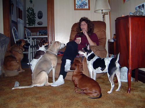 2006-09-19 - DogTimesFive-0058