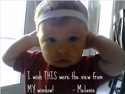 Mel's Window