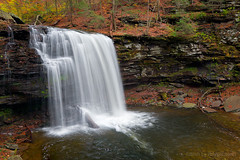 ricketts glen fall 2008 7136 [no invites/icons please] (blypix) Tags: park fall tuscarora waterfall harrison adams state pennsylvania glen wright 2008 reynolds oneida ricketts ganoga bly2k binhlyfineartforsale wwwblypixcom