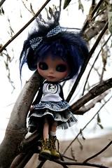 i climb to the tree