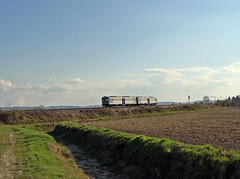 Trenitalia ALn668 (Maurizio Boi) Tags: railroad italy train rail locomotive railways treno trenitalia ferrovie locomotiva aln668