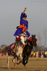 Nihang Baba Maghar Singh does it again! (Ajit Pal Singh) Tags: two horses india game history sports sport festival youth rural speed photo dance colorful village bullock action folk bare events traditional religion culture mini games event riding winner warrior olympics sikh cart punjab popular 2009 baba schedule kila sponsor bravery daredevil stunt tugofwar bhangra courage gallop singh daring gallary sardar ludhiana balle compete galloping quila footed grewal kabbadi qilla raipur nihang giddha kilaraipur maghar mywinners magghar qilaraipur magharsingh