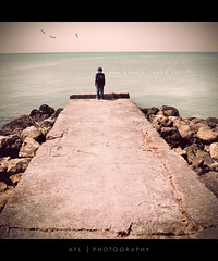how deeply i need you (alvin lamucho ) Tags: ocean morning boy sea seagulls photoshop vintage concrete rocks path stones son symmetry cracks vignette pathway lightroom agedtone