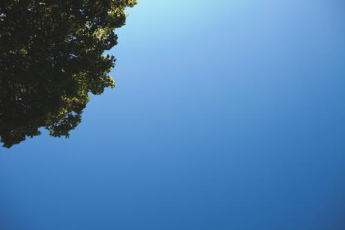 sky copy