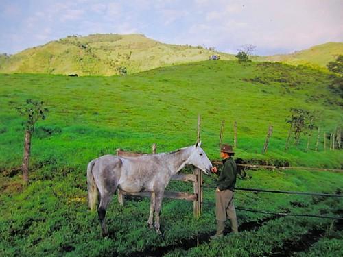 ecuador-farm-land