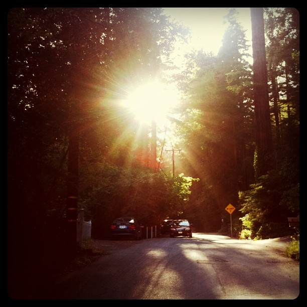 Arriving at our Russian River getaway, spending a creative, recharging weekend with my fabulous LIDL creative ladies!
