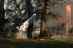 Memento mori (sonofsteppe) Tags: life park street city shadow urban black detail tree art wall dark photography graffiti design still mural paint hungary mood outdoor budapest scene spray explore shade environment 60mm visual exploration shady pest fragment bole vrosliget wallscape sonofsteppe pusztafia urbanlifeoftrees