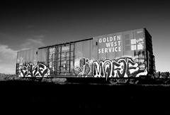 Cake / News / Mofoe (All Seeing) Tags: news art cake graffiti trains hr sfgraffiti graffitiart tko freights gws paintedtrains cake1 railart sanfranciscograffiti takingover monikers hoodrich hrk goldenwestservice freightgraffiti oaklandgraffiti boxcarart bayareagraffiti mofoe