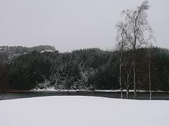 Winter............. (Michelsen Photography) Tags: winter snow nature norway lumix march outdoor motive 2008 fjell zazzle sotra blueribbonwinner otw ©allrightsreserved arefjord roymichelsen fjellkommune httpwwwzazzlecomneslehcim motive4u2see