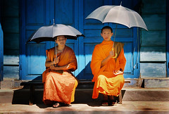 Monks in Luangprabang, Laos (Christoph Christoph) Tags: peace shadows buddhist buddhism monks enlightenment midday umberellas saffronrobes luangprabanglaos adifferentpointofview