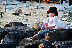 (A.A.A) Tags: family boy summer lake 3 cute k photography swiss bin lausanne nephew mohammed fahad aaa loveu 2007 amna  irresistible 7abibi  althani   alshai5 amnaaalthani hawaalrayyanfav