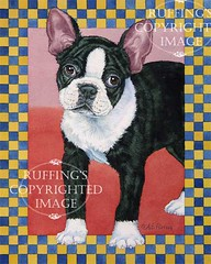 """""""Stepping Out"""" AER86 by A E Ruffing Boston Terrier"""