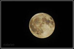 Moon Illusion: one big ass moon (chickentinola) Tags: fullmoon moonillusion nikond40 nikkor15200vr