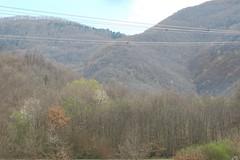 ...boschi, infiniti boschi... (nicolai renato AQ (nicoren)) Tags: terminillo boschi