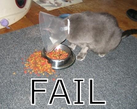 http://farm4.static.flickr.com/3143/2616257793_d29cd8452e.jpg