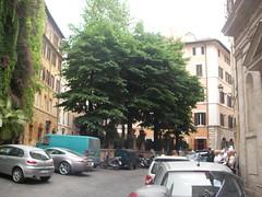 SANY0218 (Vanbest) Tags: italy rome emile romagna