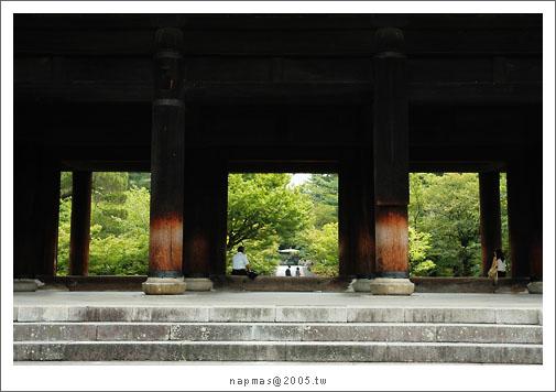 DSC_6810.jpg