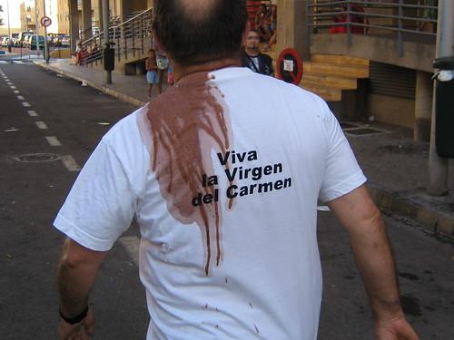 Verbena Virgen del Carmen