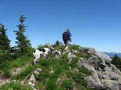 Warren and Jasper summit