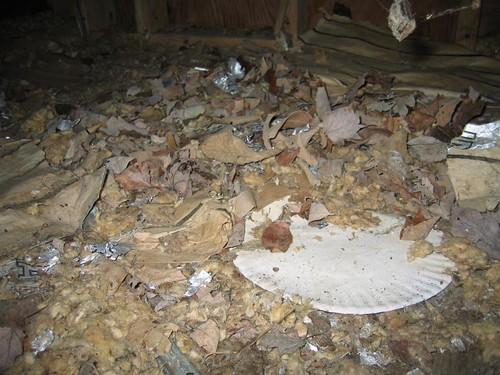 Crap coated floor