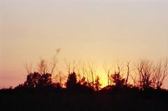 Sunset at Pleasure Beach (and.korn) Tags: sunset nature minoltasrt101