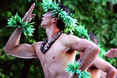 Strength. (TashaLoz) Tags: light art photography hawaii coast dance tour hula performance culture east hawaiian ambient performingartscenter halau jacobspillow tashaloz halauikawekiu canonrebelxti50mmf14