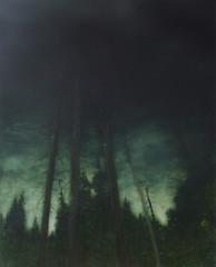 Lull (Tina Gibbard) Tags: painting oil